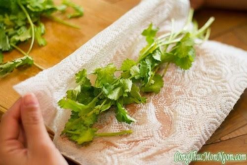 3 cách bảo quản rau mùi tươi lâu
