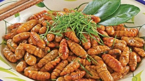 5 lưu ý khi ăn nhộng tằm để không ngộ độc