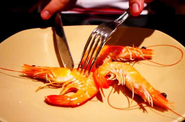 Bí quyết bóc tôm không cần đụng tay khi đi ăn nhà hàng