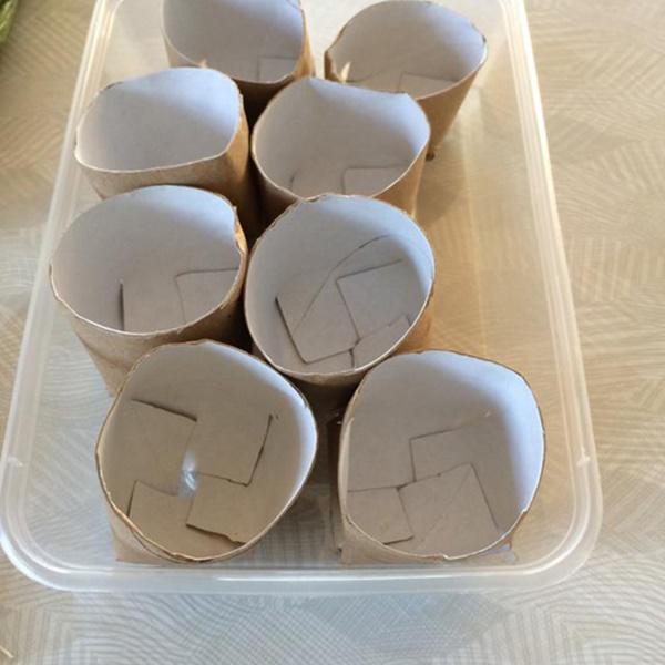 Chỉ mất 5 phút trồng vào lõi giấy vệ sinh, cả năm đỡ tốn tiền mua hành lá