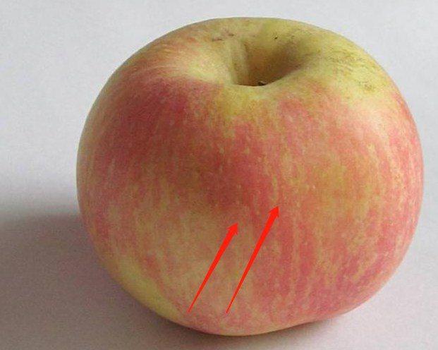 Mua táo ở siêu thị, đừng dại chọn 4 quả như thế này vừa không ngon lại phí cả tiền