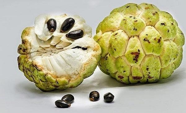 Nắm được chiêu chọn na ngon ngọt - nhiều cùi ít hạt này, đến người bán cũng sẽ phải 'ngả mũ nể phục'