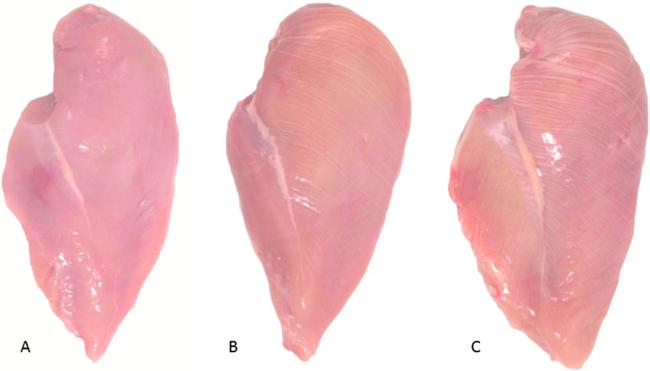 Phải đọc: Mua thịt gà thấy mấy đường này thì lập tức bỏ xuống, chớ dại mà mua