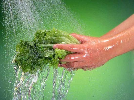 Rửa rau ai cũng nghĩ dễ ợt thế nhưng có những điều hầu hết chúng ta còn