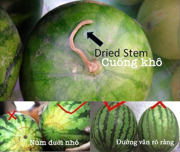 Từ A-Z cách chọn các loại trái cây mùa hè